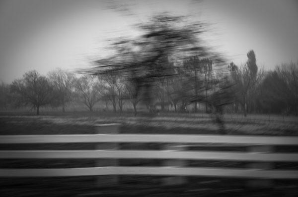 ©copyring 2011, Robert D. Barrett