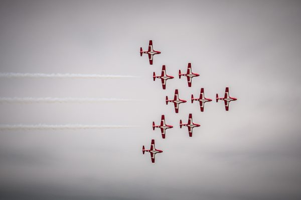 Snowbirds, © copyright 2012, Robert Barrett