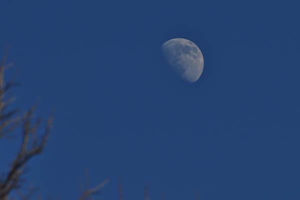 Moon 1 - Moon Tips...