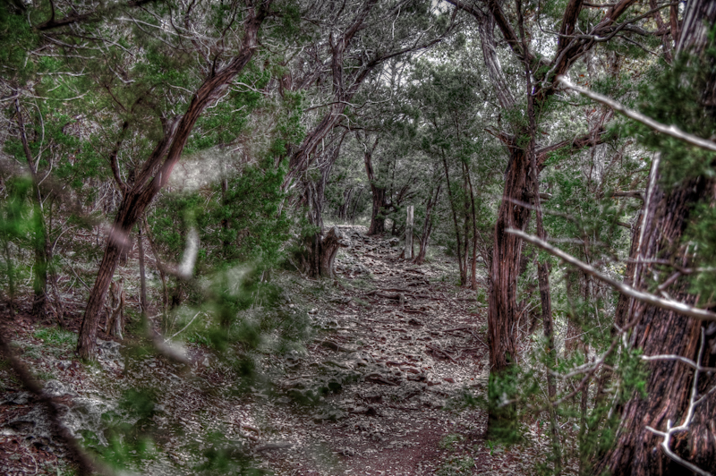 DSC3394 5 6 - The Beaten Path...