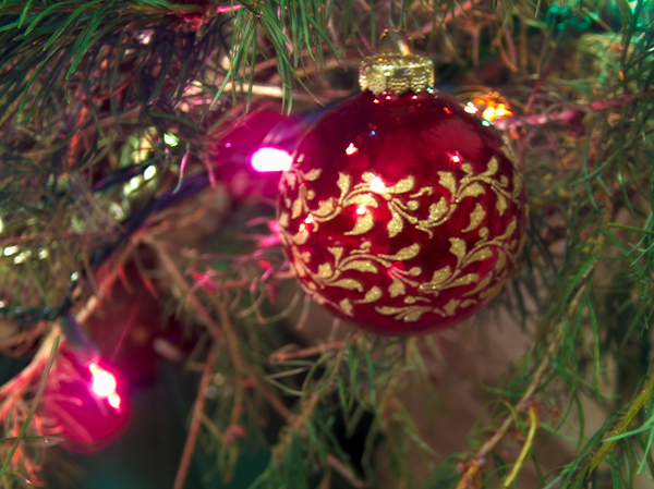 HPIM0540 - Merry Christmas Everyone...