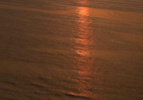 DSC 6117 500x350 - Oceans...