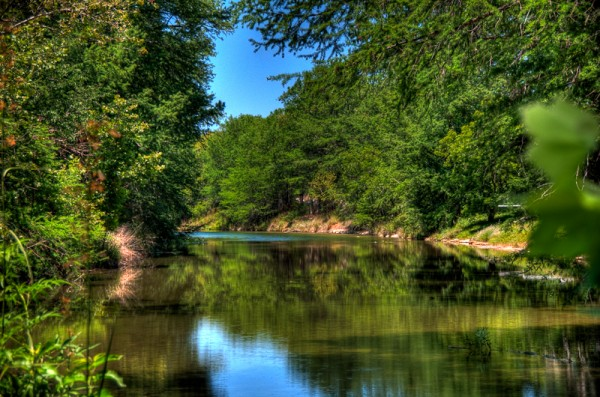 DSC 0768 69 70 600x397 - Hill Country Beauty...